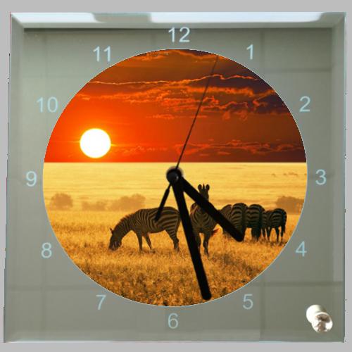 Vierkante klok zonsondergang zebra